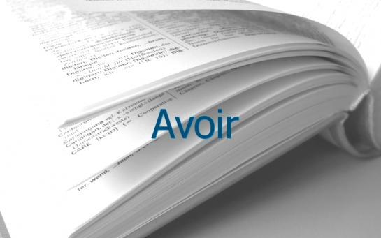 Definition Avoir Conjugaison Le Parisien