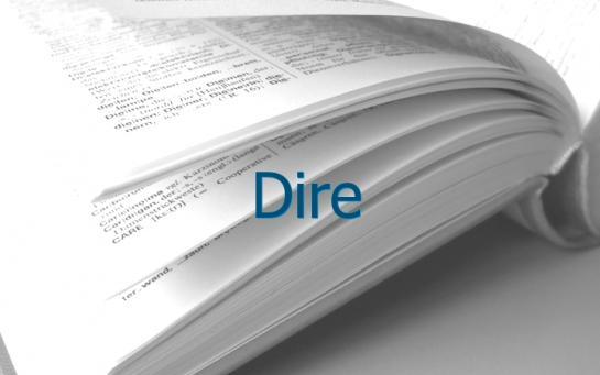 Definition Dire Conjugaison Le Parisien