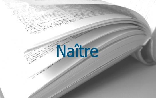 Definition Naitre Conjugaison Le Parisien